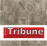 Ermelo-Tribune-160x160
